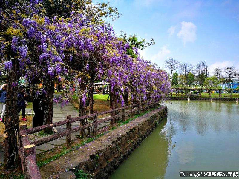 龜山大湖公園紫藤花